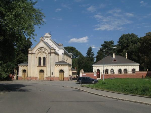 Brno-zidovske tic